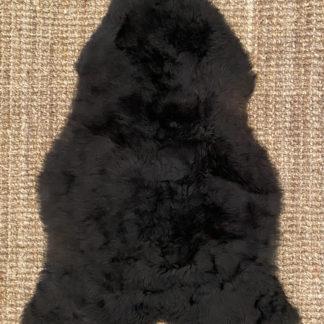 Musta-ruskea lampaantalja